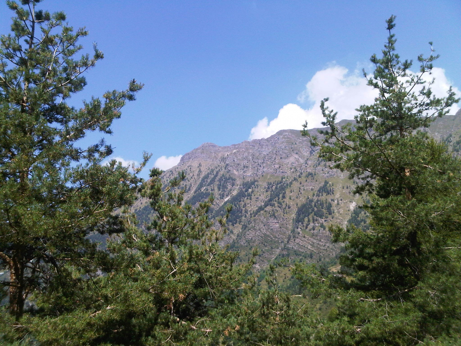 Monte Saccarello 26 & 27th July 2012 -Foto 3-
