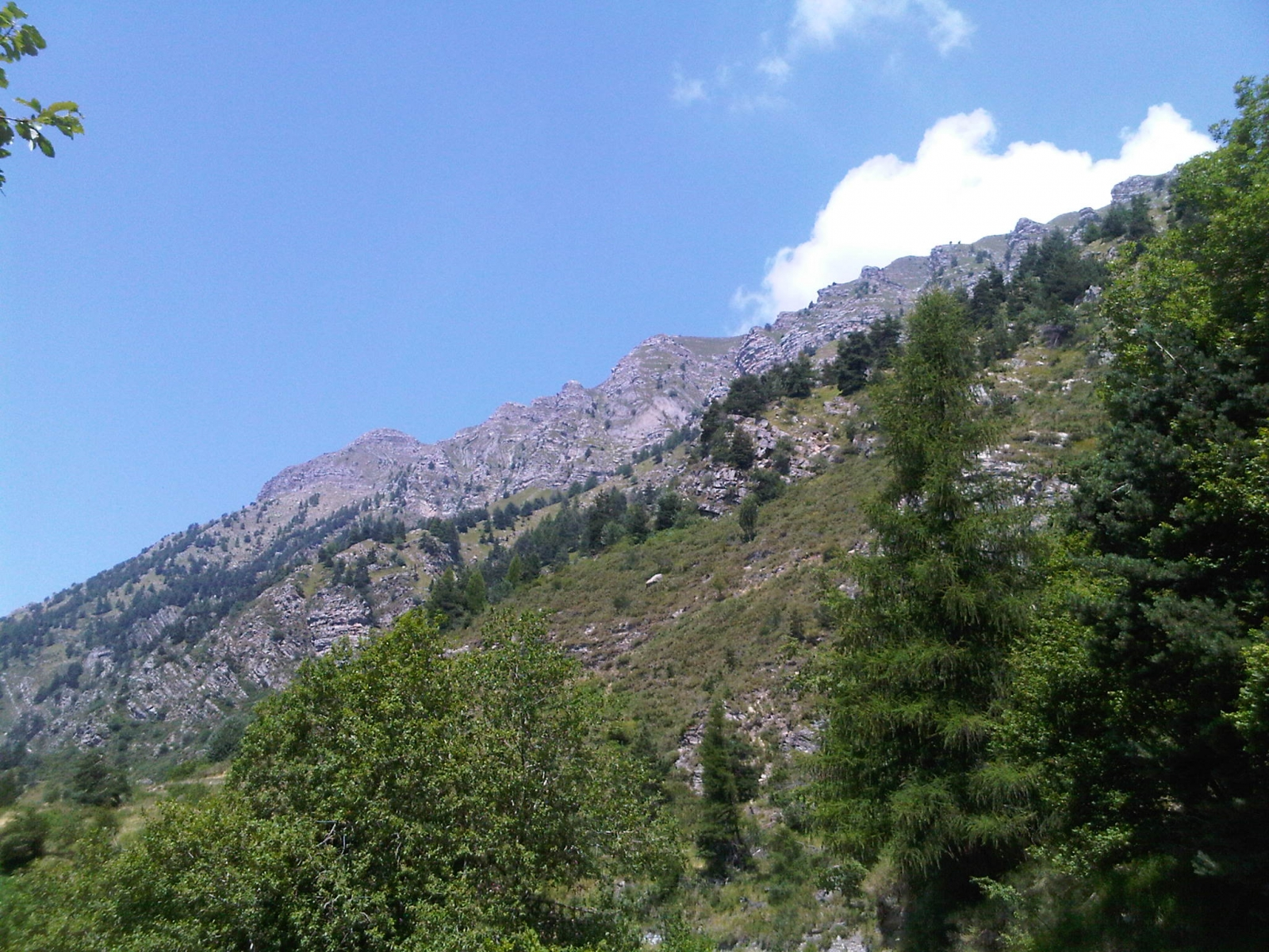 Monte Saccarello 26 & 27th July 2012 -Foto 4-